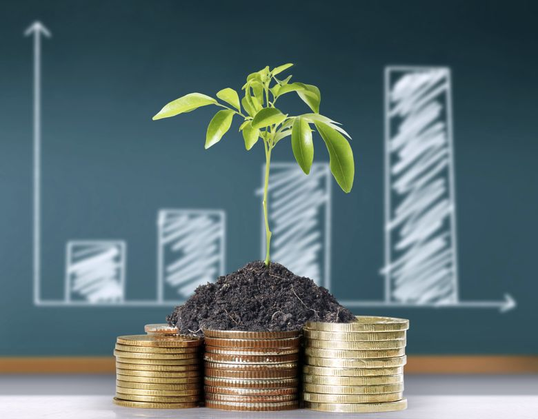 Бизнес на Кипре: инвестиции