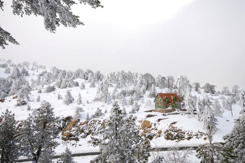 Погода и климат на Кипре: Февраль - лучший месяц для снега на лыжах в горах Троодос