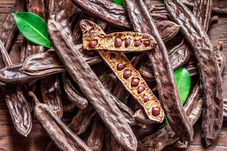 Изображение семян рожкового дерева. Блог ProCyprus